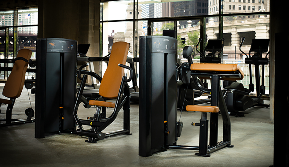 Equipment Life Fitness Axiom Biceps Curl column